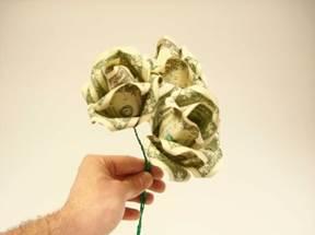 Солейролия уход в домашних условиях, фото растения 1